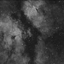 IC1318,                                Xaxas
