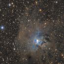 NGC 7023,                                Fan