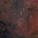 IC 1396 Elephant Trunk,                                Michael_Xyntaris