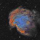 NGC 2174 Monkey Head Nebula Hubble pallet,                                Marc Verhoeven