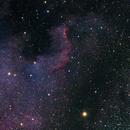 North American Nebula,                                Astrowood