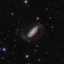 NGC 1808,                                Ray Johnson