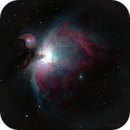 Great Orion,                                SwissHeaven