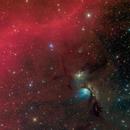 M78 and Barnard's loop,                                ggt