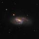 Leo Triplet (NGC 3627),                                stricnine