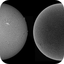 Sun in H-alpha - 03/10/2015 10:32 UTC.,                                Pawel Warchal