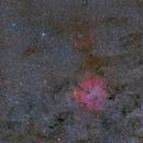 Cepheus by Cygnus at 135mm in full frame DSLR,                                S. Stirling