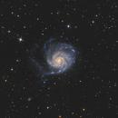 M101 galaxie du Moulinet,                                LAMAGAT Frederic