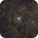 Iris Nebula NGC7023,                                Pawel Turek