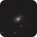 NGC 772 - Arp 78 Spiral Galaxy in Aries,                                Benny Colyn