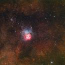 A Wide Field M20 the Colorful Trifid Nebula,                                John Hayes