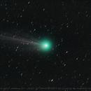 Comet C/2014 Q2 (Lovejoy),                                Angelillo