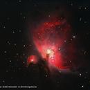 M42 - Orion Nebula,                                Herwig Diessner