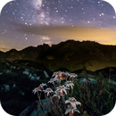 Edelweiss and Milkyway,                                MrPhoton