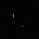 Whale Galaxy,                                Mark Minor