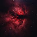NGC 2024,                                Gary Imm