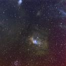 Bubble Nebula 384mm 2019,                                Bob Stevenson