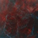 """Gorilla in the mist"" - Vela Supernove Remnant,                                Paul Hancock"