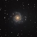 M74 galaxy, unguided.,                                Juan Pablo (Obser...