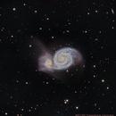 M51,                                Chassaigne