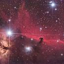 Horsehead Nebula,                                Richard Muhlack