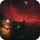 New Horsehead in Bortle 8++,                                minhlead