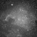 NGC7000 North America nebula Mono,                                omar salah