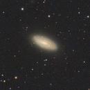 NGC 5033, NGC 5005, IC 4182, others in Canes Venatici - LRGB,                                Roberto Botero