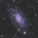 NGC 2403,                                pmneo