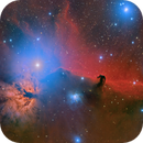Flame and Horsehead in Orion,                                Scott M. Stirling
