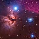 Barnard 33 and NGC 2024,                                Clayton Bownds