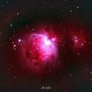 Orion Nebula,                                Amrinder Singh