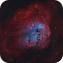 IC410 Tadpole Nebula,                                Rolf Dietrich