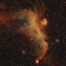 Seagull nebula in SHO,                                Janos Barabas