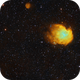 IC443 and Monkey head in SHO palette,                                Janos Barabas