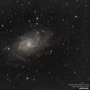 Triangulum Galaxy M33,                                Landon Boehm