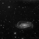 NGC 5033 Luminosity,                                Eric Coles (coles44)
