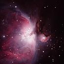 M42 Nebula,                                NeilBuc