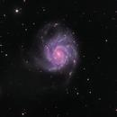 The Pinwheel Galaxy,                                Mostafa Metwally