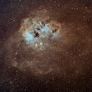 NGC1893 TadPole in SHO,                                TimothyTim