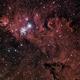 NGC2264 - Cone Nebula - A wider view in HaRGB,                                Richard Bratt