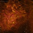 A Weird False color Flaming Star Nebula,                                Edoardo Luca Radi...