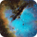NGC 281 Pacman Nebula,                                Pat Rodgers