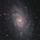M33 the Triangulum Galaxy,                                Pierre Tremblay