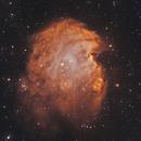 NGC 2174 – Monkey's Head Nebula,                                Adam Cseh