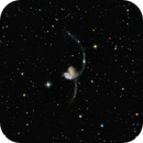 Antennae Galaxies,                                Dcox17