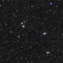 Leo Galaxies,                                William Maxwell