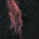 NGC 1499,                                Preis Alois