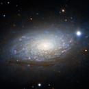 Sunflower Galaxy - M63,                                Tim Hutchison