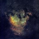 Cepheus Pilars (NGC7822) in Hubble Palette (SII/Hα/OIII),                                Jose Carballada